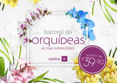 GF---Super-Banner---Festival-de-Orquídeas-face